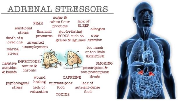 adrenal-stressors